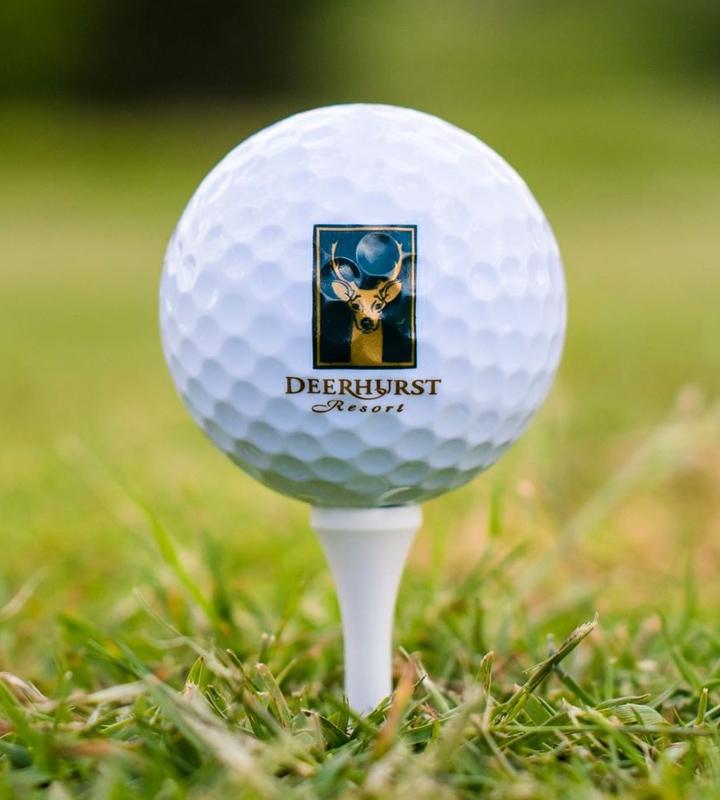 Deerhurst Resort responsive web design