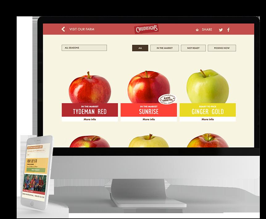 Chudleigh's website optimization